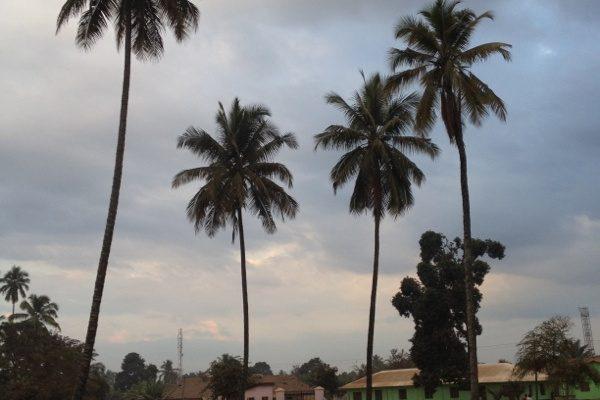Tanzania12viaggio_18